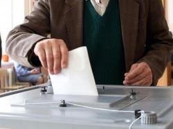 Правозащитник заявил об отсутствии информации о серьезных нарушениях на выборах